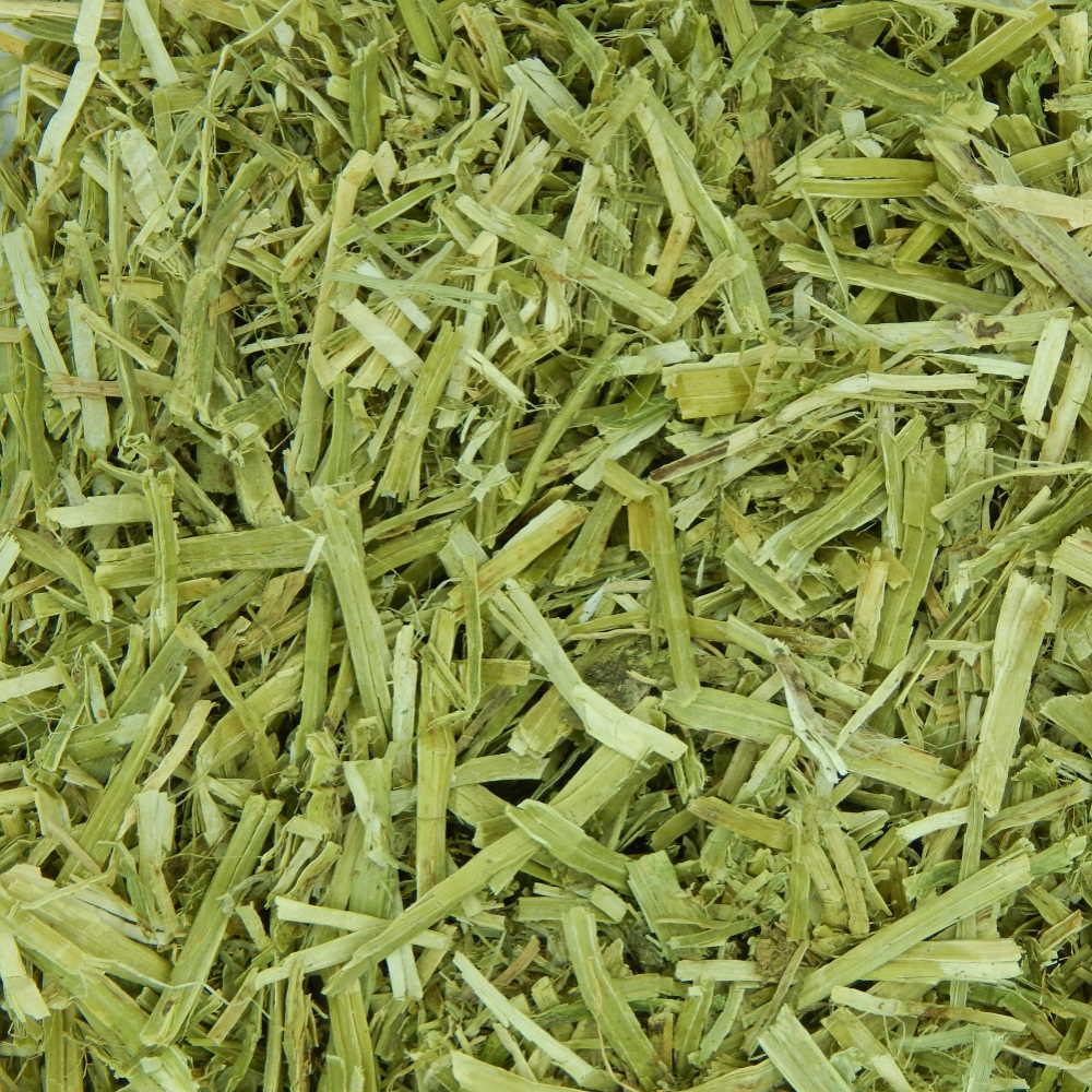Alfalfa Forage - 100g