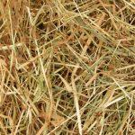 Meadow Hay 9kg